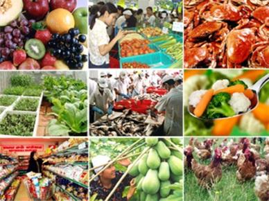 Quyết định số 01/2012/QĐ-TTg về một số chính sách hỗ trợ việc áp dụng quy trình thực hành sản xuất nông nghiệp tốt trong nông nghiệp, lâm nghiệp, thủy sản