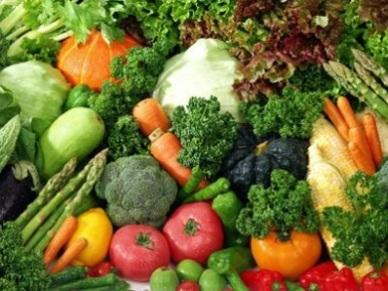 Quy trình thực hành sản xuất nông nghiệp tốt(VietGAP)cho rau, quả tươi an toàn