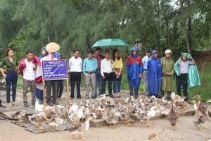 Hướng dẫn nuôi gà, vịt an toàn sinh học