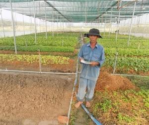 Nông sản VietGAP bí đầu ra