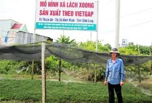 Vùng xà lách xoong VietGAP