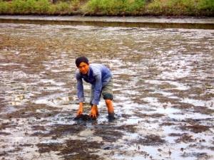 Môi trường nuôi trồng thủy sản - Thách thức lớn: Vượt rào cản để