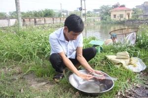 Ứng dụng tiến bộ kỹ thuật sản xuất giống cá trắm đen