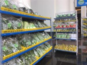 Vĩnh Phúc sẽ trở thành trung tâm sản xuất rau an toàn của cả nước