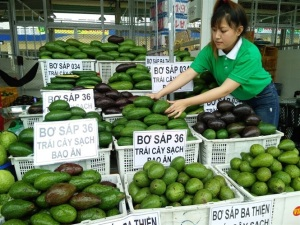Đưa nông sản mũi nhọn Việt Nam ra thế giới