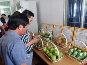 Khánh Hòa: Chứng nhận 3 sản phẩm an toàn theo VietGAP