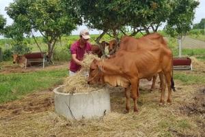 Thay đổi cơ cấu chăn nuôi thế nào?