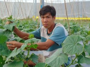 Chuyện khởi nghiệp của chàng trai tu nghiệp ở Israel về quê trồng dưa lưới