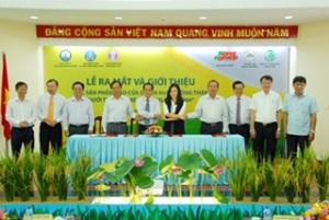 Ra mắt sản phẩm gạo an toàn