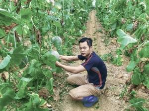 Khởi nghiệp thành công với giấc mơ làm nông sản sạch ở tỉnh nghèo