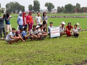 8X trồng rau muống VietGAP lãi 20 triệu đồng/tháng