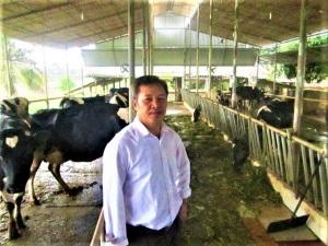 Phát triển trang trại chăn nuôi hàng hóa