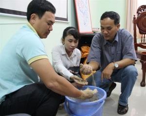 Hậu Giang: Tập huấn TOT về VietGAP trong chăn nuôi