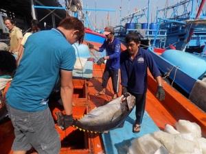 Anh sẽ tiếp tục chấp nhận giấy C/C theo mẫu của EU với thủy sản Việt Nam
