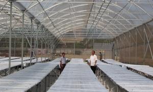 Khởi động nông nghiệp công nghệ cao ở Quảng Trị