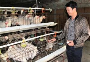 Agribank đồng hành cùng trang trại tiền tỷ