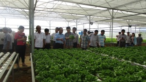 Nông nghiệp hữu cơ thích ứng biến đổi khí hậu