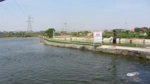 Bí quyết nuôi thủy sản có lãi thời giá cả xuống thấp