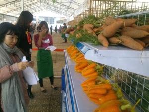 Khai trương chợ nông sản sạch tại Hà Nội