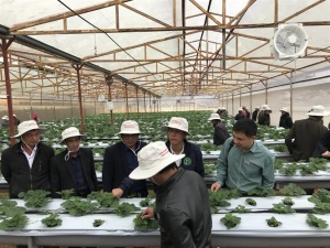 Grow FA tổ chức hội thảo phân hữu cơ với cây ăn trái, rau màu