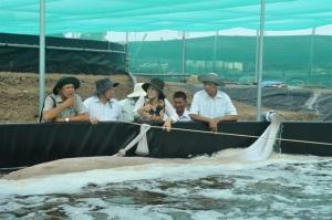Chủ tịch UBND tỉnh Kiên Giang Phạm Vũ Hồng: Xây dựng thủy sản thành ngành sản xuất hàng hóa lớn