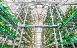 Mục sở thị quy trình sản xuất các sản phẩm nông sản công nghệ cao
