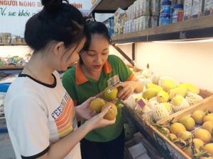 1 triệu quả cam Vinh được truy xuất nguồn gốc, chiếm lĩnh niềm tin người tiêu dùng