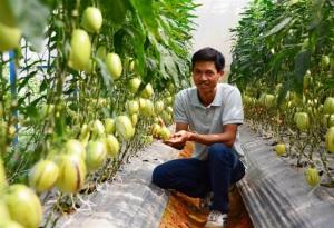 Nông nghiệp Lâm Đồng phát triển mạnh khi áp dụng công nghệ