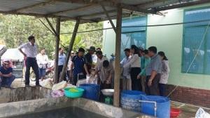 Đà Nẵng: Hỗ trợ giống cá nước ngọt