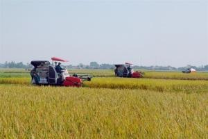 Yên Khánh, miền quê đáng sống