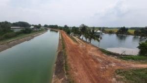 Độc đáo nghề nuôi cá dọc kênh nước ngọt ở Tây Ninh