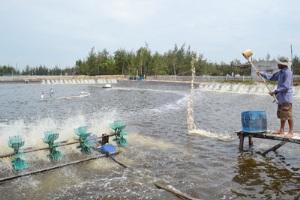 Cần thay đổi tư duy nuôi thủy sản